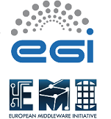 EGI User Forum 2011